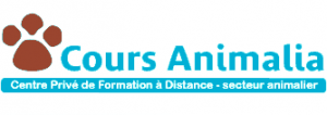 formation-soigneur-animalier-cours-animalia