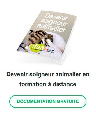 formation-soigneur-animalier