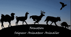 Formation Animal Protect